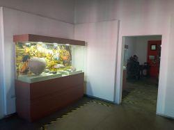 museo-historia05