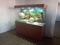 museo-historia10